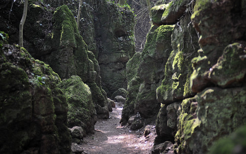 Open-air Caves At Puzzlewood