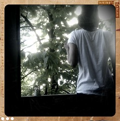 shot_1303660751732