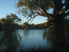 Darling River (AnnieRivers63) Tags: lake river flood outback darling woolshed menindee kinchega pamamaroo