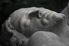 Hamburg Ohlsdorf Cemetery (michael_hamburg69) Tags: sculpture friedhof cemetery germany geotagged deutschland maria jesus hamburg skulptur michelangelo copy ohlsdorf kopie stpeter christus pieta vatikan grabdenkmal gottesacker ah17 geo:lat=5362845639196413 geo:lon=10045520821456875