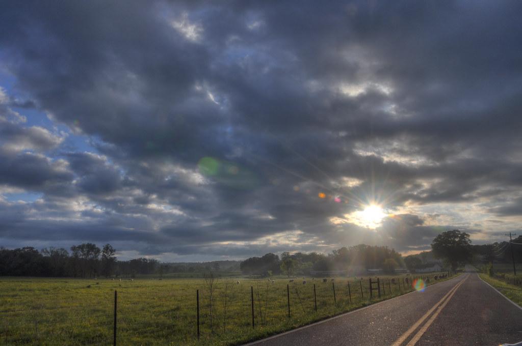 pleasant_sunrise