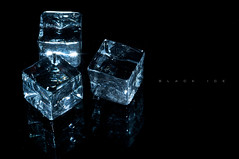 black ice (erkua) Tags: black macro ice canon flash negro 100mm speedlight gel hielo aguamarina strobist
