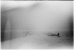 Winter traffic#3 (batuda) Tags: winter mist snow d76 om kaunas hp5plus 2835 sanciai