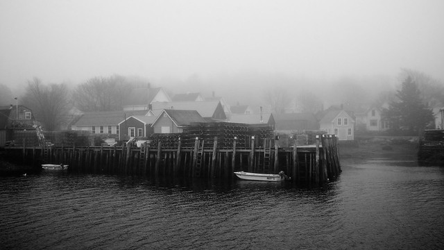 Foggy Day in Vinalhaven