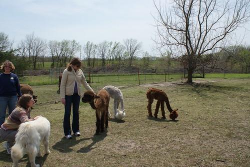 Yarn School Spring 2011