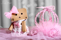 Royal Danbo  Waiting For her Prince Charming   (SaRa Meow  .. / @sosoMeow) Tags: pink party cute love toys waiting dress princess bokeh royal danbo canon50mmf14 danboard sarameow
