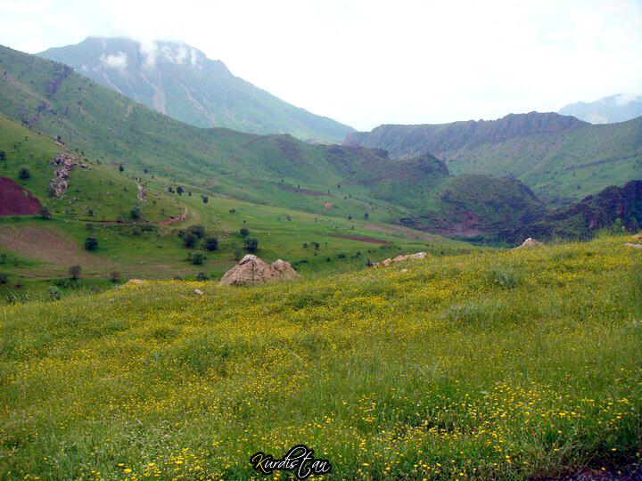 جمال الطبيعة كردستان العراق 5723360513_c48d5f7f41_b.jpg