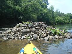 Saluda River Paddle-45