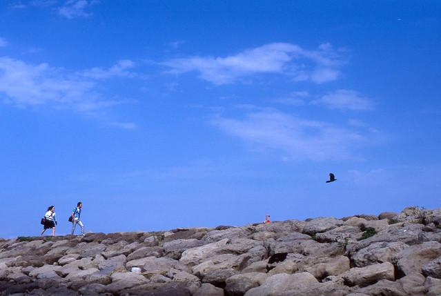 堤防の海風