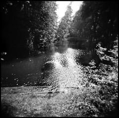 (Coco K...) Tags: blackandwhite 6x6 holga eau noiretblanc reflet arbres surprise lille argentique citadelle pcl kodaktrix400 mercidavid