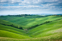 Undulations (Thierry Hennet) Tags: cz2470mmf28 italia italy siena sony toscana tuscany zeiss a900 ambient blue cloudysky field grass green hills landscape spring sunny traveldestinations tree wheat