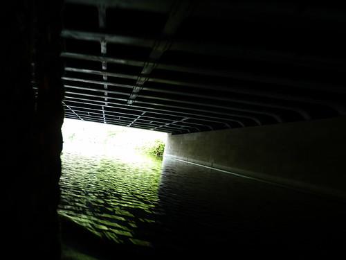 Schiffstour durch Berlin - im Landwehrkanal
