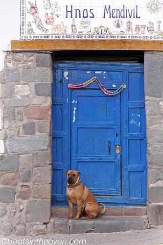 Pup and door, Plaza San Blas