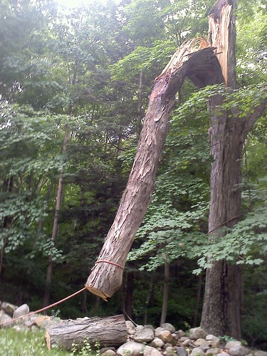 More storm damage
