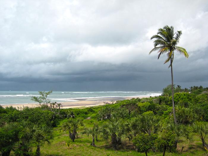 Coast of Tanzania