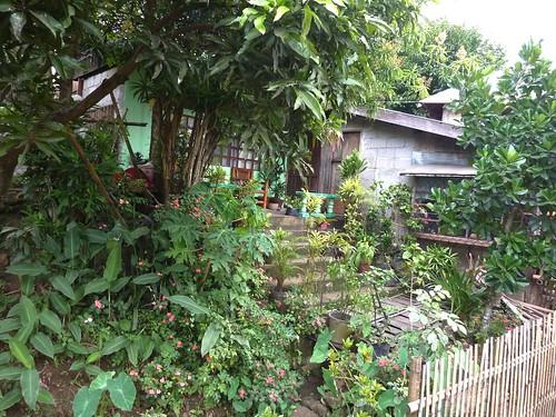 Negros-San Carlos-Bacolod (120)