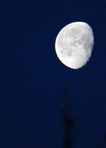 フリー写真素材, 自然・風景, 夜空, 月,