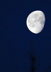 [フリー画像] 自然・風景, 夜空, 月, 201103291900