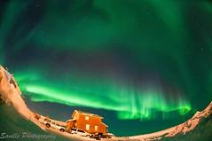 DSC_1771s (savillent) Tags: sky snow canada cold dark stars march spring nikon space north arctic aurora northwestterritories climate northernlights auroraborealis 2011 tuktoyaktuk