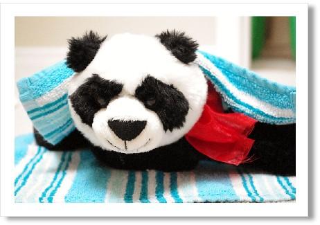 blog_march29_2011_panda