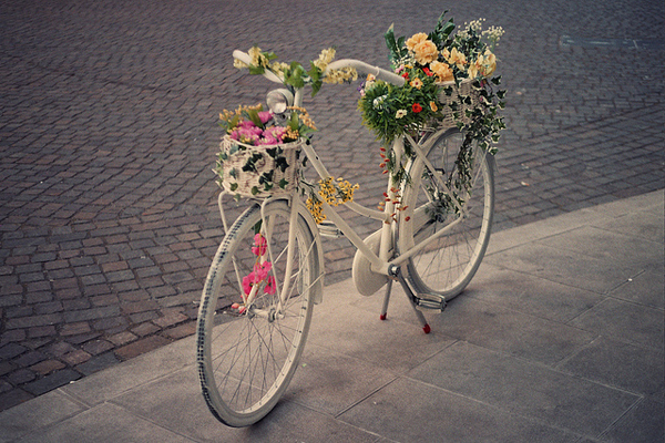bicycles with flowers wallpaper - photo #8