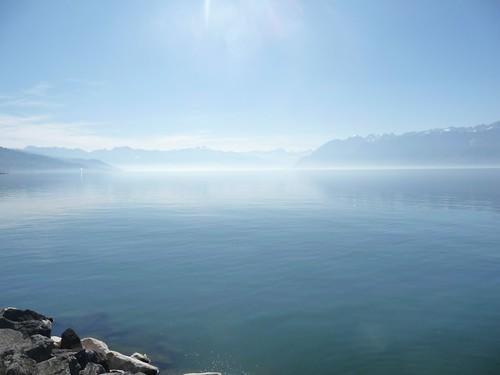 Contemplo o lago mudo
