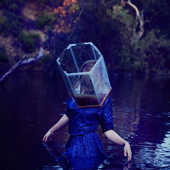 emerging from broken glass (brookeshaden) Tags: fish water pond tank dirt swamp delicate struggle brookeshaden texturebylesbrumes thisremindsmeofpyramidheadfromsilenthill