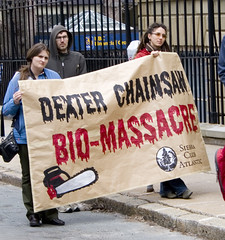 Dexter Chainsaw Bio-massacre (Smith D) Tags: trees rural woods downtown novascotia power forestry rally protest harvest electricity government carbon scotia halifax generation forests climatechange sustainable charlieparker biomass clearcutting unsustainable dnr gmofreeworld