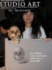 วาดเส้นหัวกระโหลก  Skull Drawing
