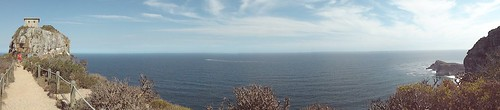 Cape of Good Hope Pano