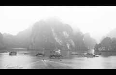 Ha Long Bay (LeonardKong) Tags: white black heritage tourism landscape photography photo flickr image picture 旅游 风景 照片 halongbay 白 veitnam 摄影 圖片 越南 黑 下龍湾