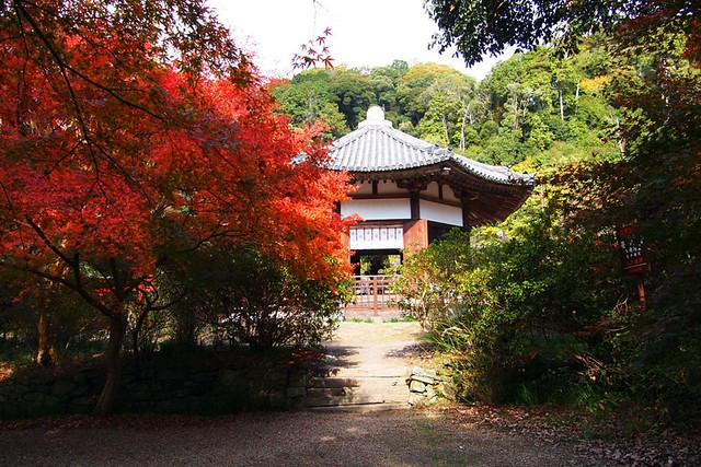 20101120_111015_栄山寺_八角堂(国宝)