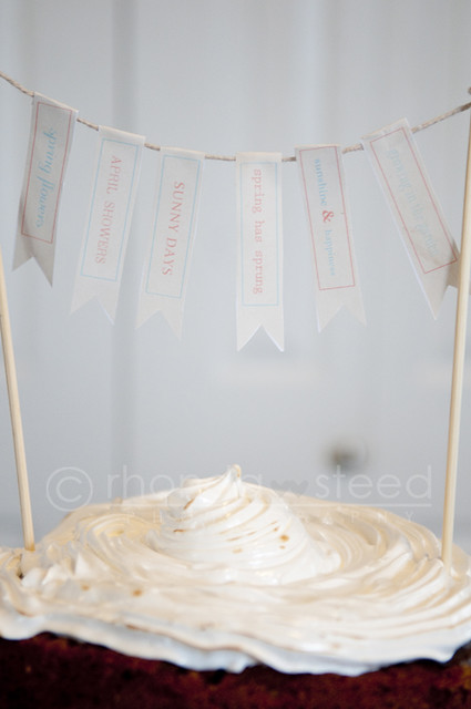 Smore's Cake - the banners