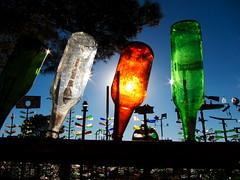 Elmer's Bottle Tree Ranch 6 (tobysx70) Tags: california ranch ca toby tree green digital canon amber grande bottle highway long near trails 66 powershot hwy clear route national hancock elmer rt rte oro s90 elmers bryman helendale canonpowershots90 canons90 tobyhancock
