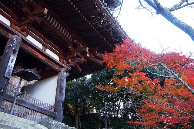 20101120_140840_吉野山_金峯山寺_仁王門(国宝)