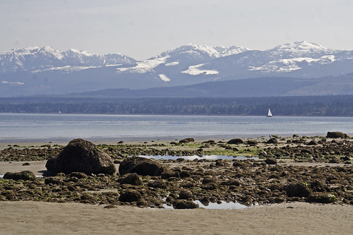 low tide, mountains and a sailboat