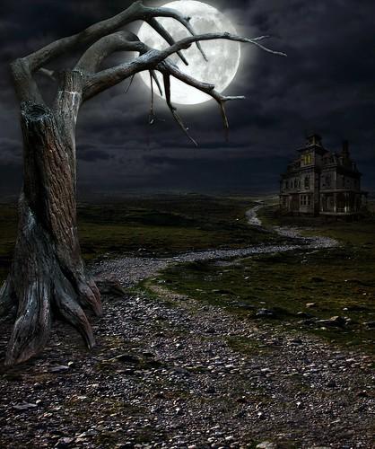 [フリー画像] グラフィックス, フォトアート, 月, 樹木, 道, 201104290100