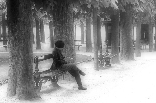The Reader - Reading a book in the Jardin de Luxembourg, Paris- foto: pitschuni, flickr