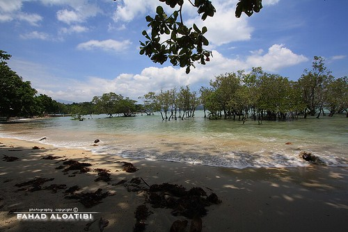 Puerto Princesa  by FAHAD AL-OTAYBI