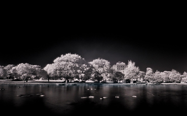 The Centennial Lake, Hokowhitu in Infrared