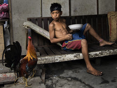 Smokey Mountain, Tondo - What the boy and the rooster were thinking ? (Mio Cade) Tags: boy food mountain kid factory child think philippines eat charcoal meal manila smokey rooster scavenger tondo ulingan