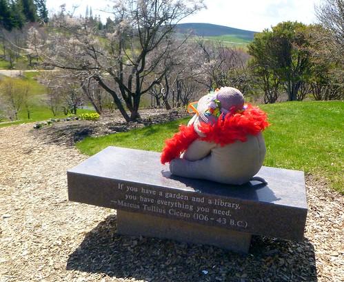 Ms Ella at the Arboretum