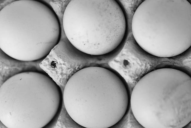 eggs b&w
