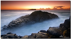 Columns of the Sea (Dave Valentine) Tags: ocean sea beach sunrise rocks head australia nsw column basalt fingal dvphotography