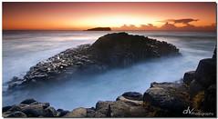 Columns of the Sea (Dave Valentine) Tags: ocean sea beach sunrise rocks head australia nsw column basalt fingal dvphotography