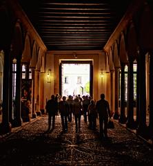 Saliendo del Alczar (Zu Sanchez) Tags: photo sevilla spain photographer andalucia andalusia turismo     zusanchez