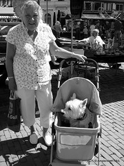 The lady that loves her dog (Amsterdam RAIL) Tags: madame woman dog chien lady streetportrait streetscene hond frau portret vrouw kinderwagen mevrouw straatportret