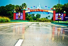 where dreams come true (kevkev44) Tags: road wet true rain sign orlando post florida crossprocess central entrance disney mickey special disneyworld dreams come minnie orangecounty waltdisneyworld relfection picnik postrain 429 centralflorida tollroad westernway westernexpressway