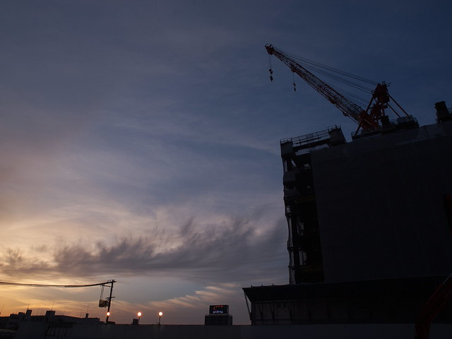 Crane in sunset