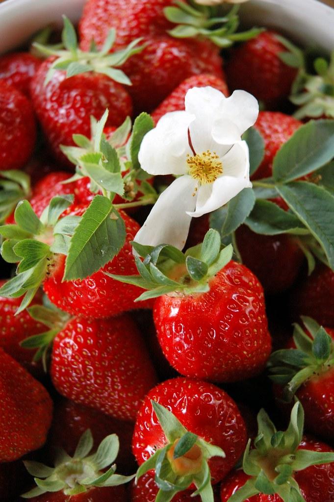Fragole e fiore
